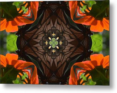 Butterfly Corner Metal Print by Chad Wasden