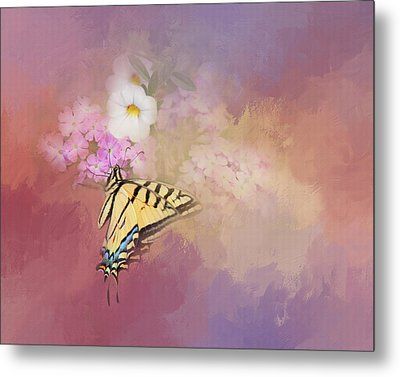 Metal Print featuring the photograph Butterfly Dreams by Theresa Tahara