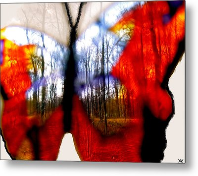 Butterfly Forest  C Metal Print by Debra     Vatalaro