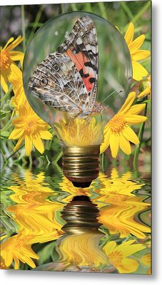 Butterfly In A Bulb II Metal Print by Shane Bechler