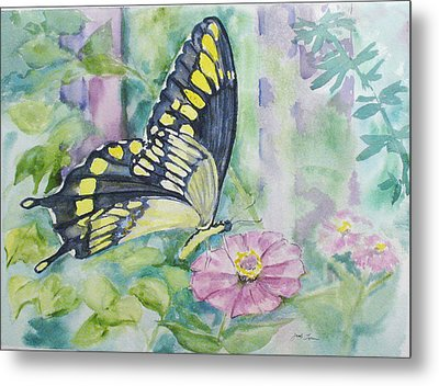 Butterfly In My Garden Metal Print by Judy Loper