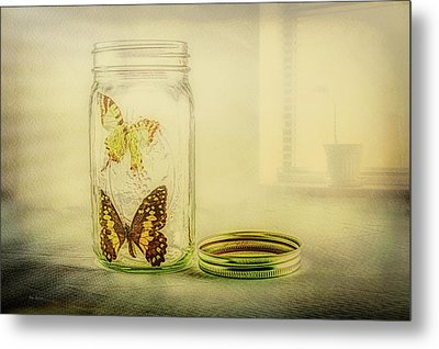 Butterfly Jar Metal Print by Bob Orsillo