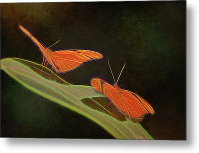 Butterfly Love 1a Metal Print