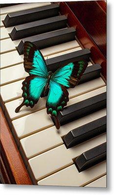 Butterfly On Piano Keys Metal Print