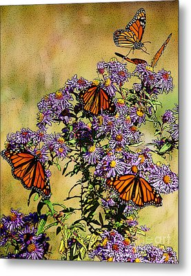 Butterfly Party Metal Print