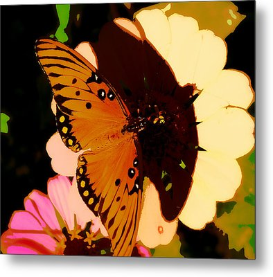 Butterfly Shadows Metal Print by Dottie Dees