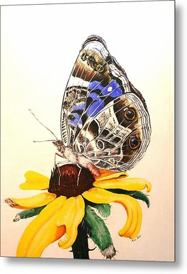 Metal Print featuring the painting Butterfly Sun by Mike Ivey