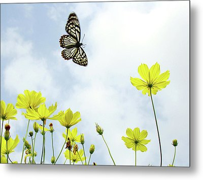 Butterfly With Flowers Metal Print by Adegsm