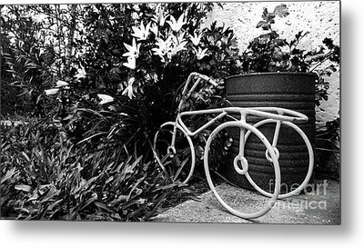 By The Flower Garden. Metal Print