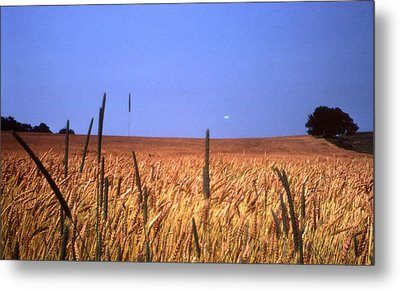 By The Highway 2 Metal Print by Lyle Crump