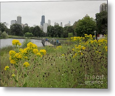 Metal Print featuring the photograph By The Lincoln Park Pond by Kathie Chicoine