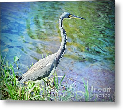 By The Riverside Metal Print by Judy Kay