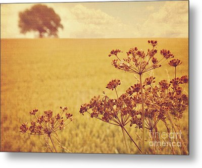 By The Side Of The Wheat Field Metal Print
