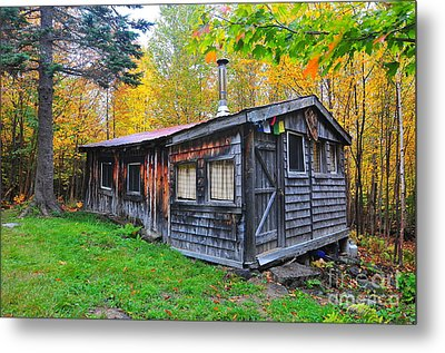 Cabin In The Woods  Metal Print by Catherine Reusch Daley