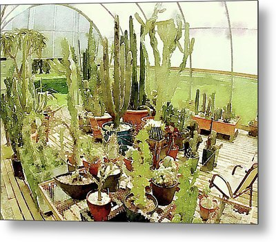 Cacti In The Greenhouse Metal Print by Susan Maxwell Schmidt