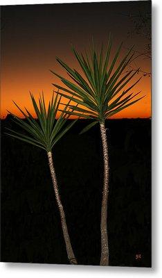 Cactus At Sunset Metal Print by Julie Reyes