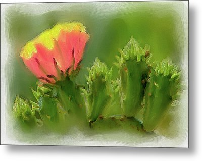 Metal Print featuring the painting Cactus Flower On A Cactus Plant Ap by Dan Carmichael