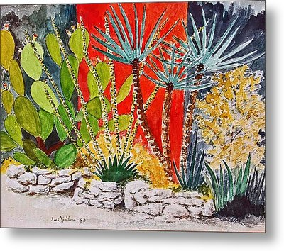 Cactus Garden  Metal Print by Fred Jinkins
