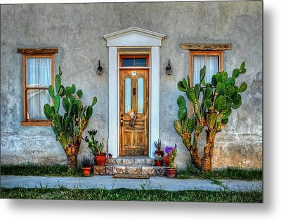Metal Print featuring the photograph Cactus Guards by Ken Smith