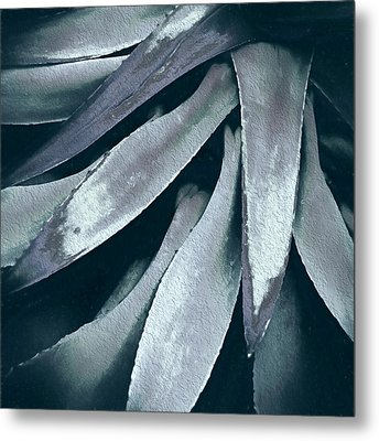 Cactus In Blue And Grey Metal Print by Julie Palencia