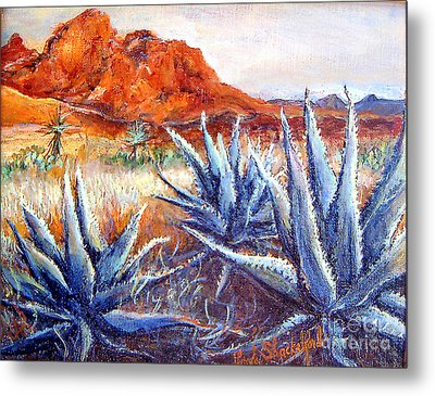 Cactus View Metal Print by Linda Shackelford