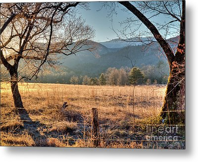 Metal Print featuring the photograph Cades Cove, Spring 2017 by Douglas Stucky