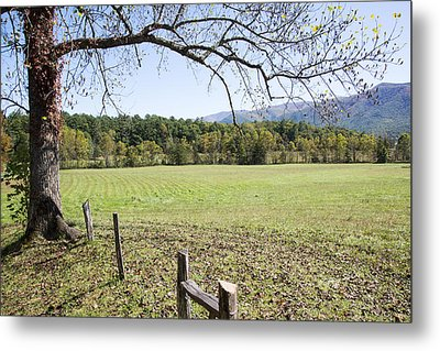 Cades Fence Metal Print by Ricky Dean