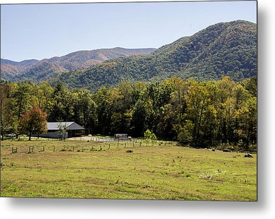 Cades Place Metal Print by Ricky Dean