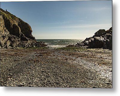 Metal Print featuring the photograph Cadgwith Cove Beach by Brian Roscorla