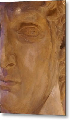 Metal Print featuring the photograph Caesar by Cynthia Powell