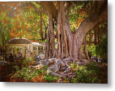 Cafe By The Grand Old Tree Lisbon Portugal Metal Print