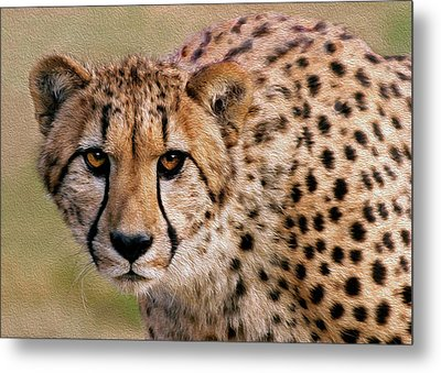 Calculated Look Metal Print