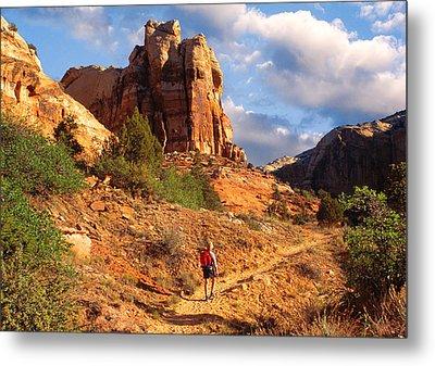 Calf Creek Canyon Escalante Utah Metal Print by Utah Images