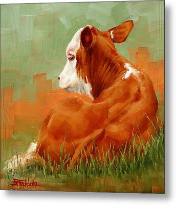 Calf Reclining Metal Print