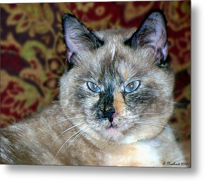 Metal Print featuring the photograph Cali-mese by Betty Northcutt