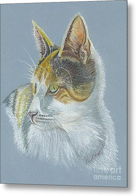 Metal Print featuring the drawing Calico Callie by Carol Wisniewski