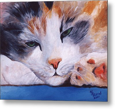 Calico Cat Power Nap Series Metal Print by Mary Jo Zorad