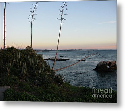 California At Twilight Metal Print