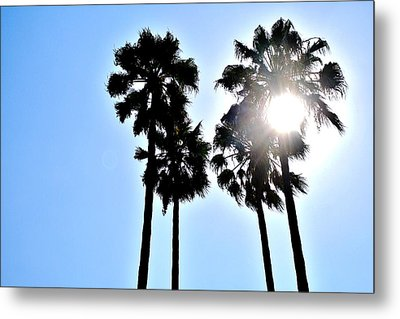 California Metal Print by Christopher Woods