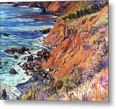 California Coast Metal Print by Donald Maier