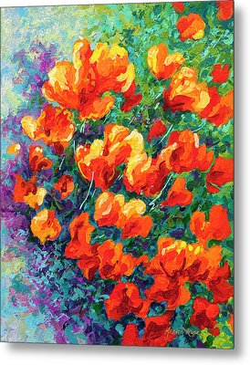 California Poppies Metal Print by Marion Rose