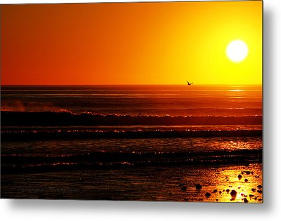 California Sunset  Metal Print by Dorothy Cunningham