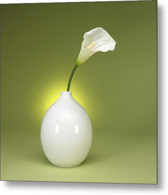 Calla Lily And Vase Metal Print by Tony Ramos
