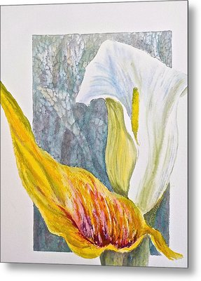 Calla Lily Metal Print by Carolyn Rosenberger