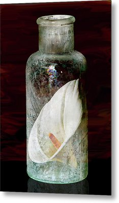 Metal Print featuring the photograph Calla Lily In A Bottle by Phyllis Denton