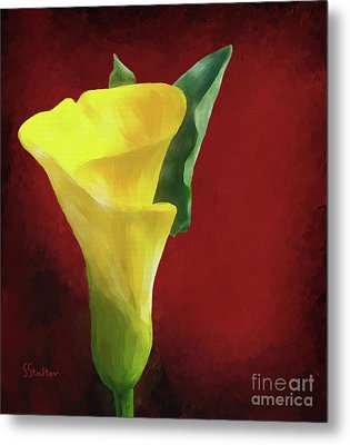 Calla Lily - Yellow Metal Print by Shirley Stalter
