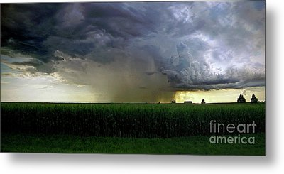 Calm Before The Storm Metal Print by Sue Stefanowicz
