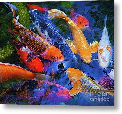 Calm Koi Fish Metal Print