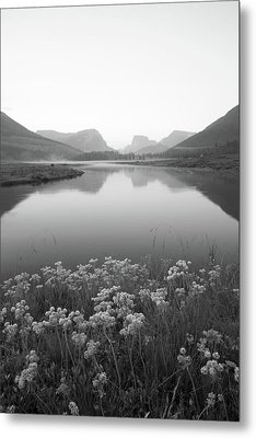 Metal Print featuring the photograph Calm Morning  by Dustin LeFevre