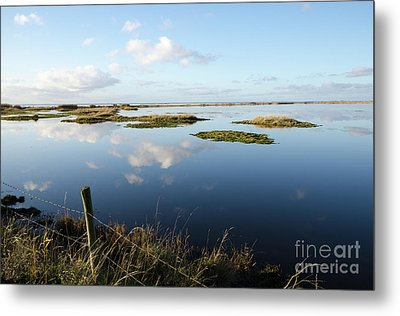 Calm Wetland Metal Print